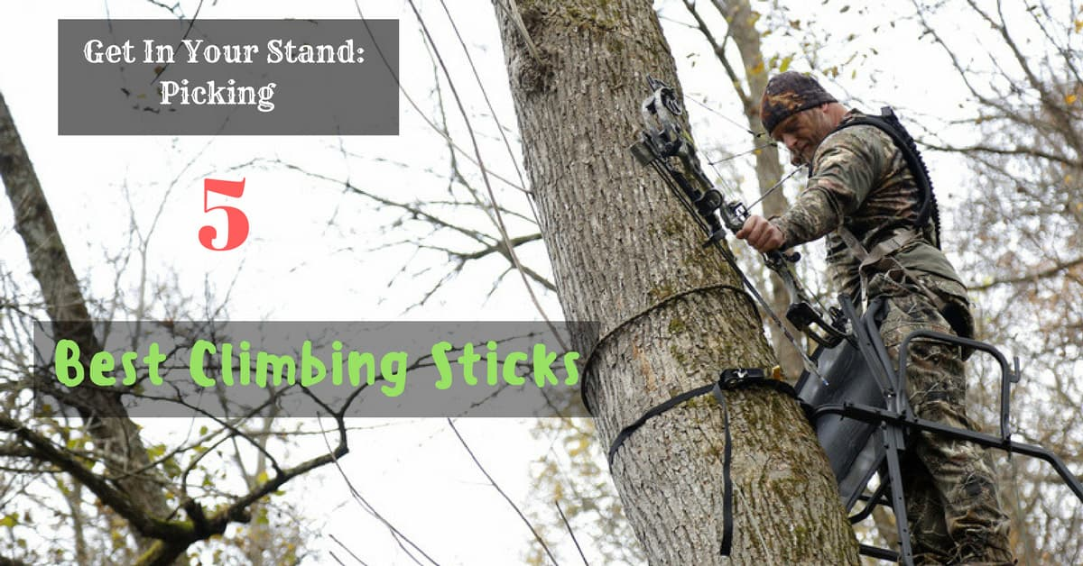 Best Climbing Sticks
