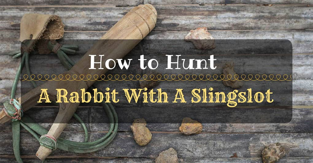 slingshot-hunting-rabbit