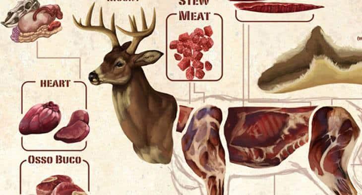 deer meat 2