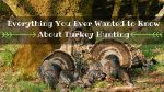 Everything You Ever Wanted to Know About Turkey Hunting