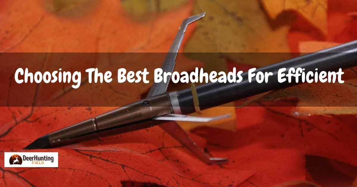 best broadhead