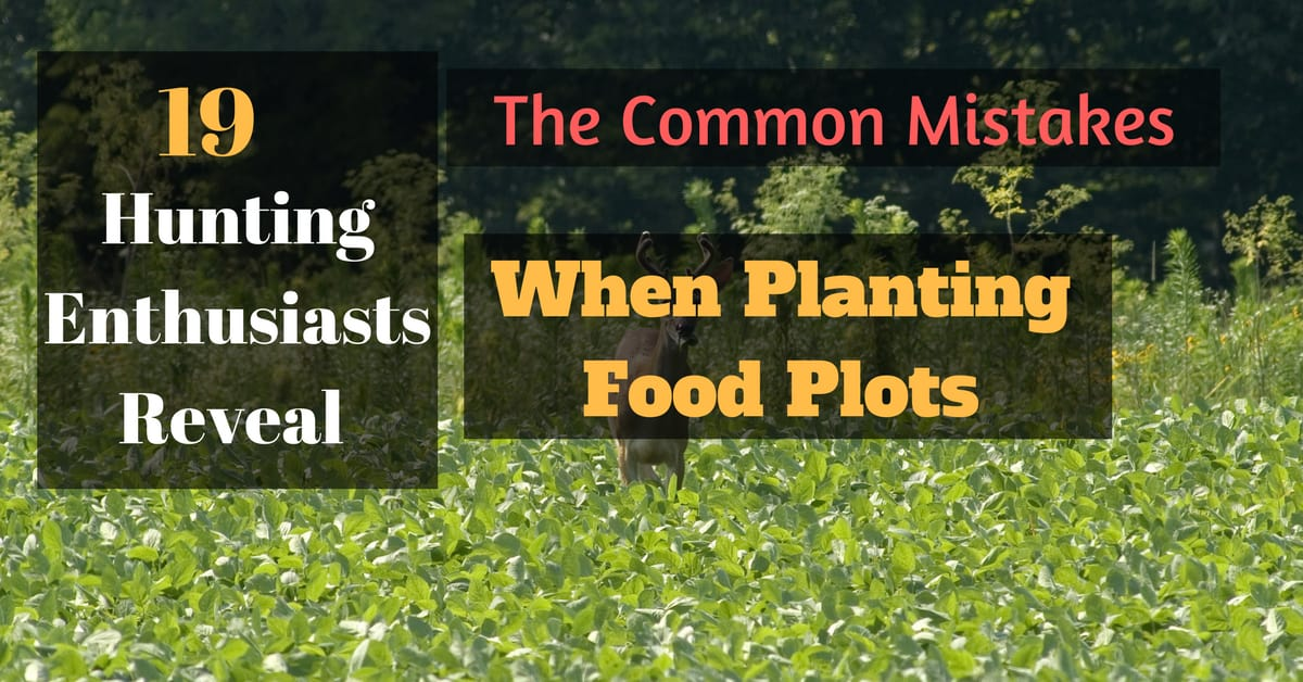 19 Hunting Enthusiasts Reveal The 3 Common Mistakes When Planting Food Plots